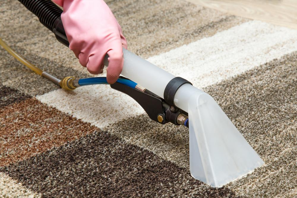 Cleaning Crew Co carpet Carpet Cleaning